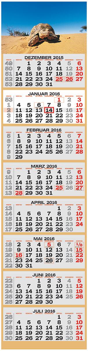 8-monats-wandkalender